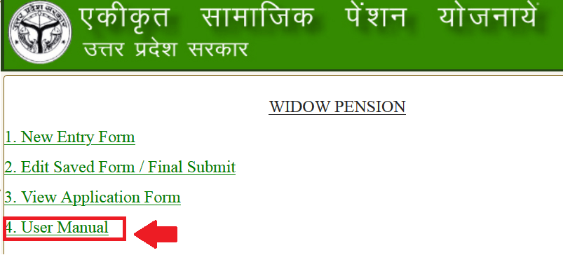 USER MANUAL SSPY VIDWA PENSION FORM min