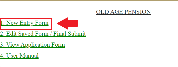 old age pension new entry form min