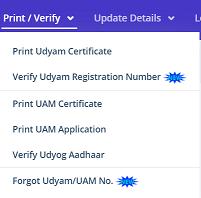 verify the enterprise registration number